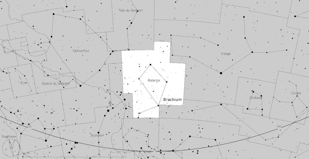 Brachium