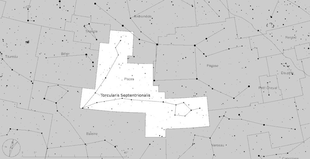 Torcularis_Septentrionalis