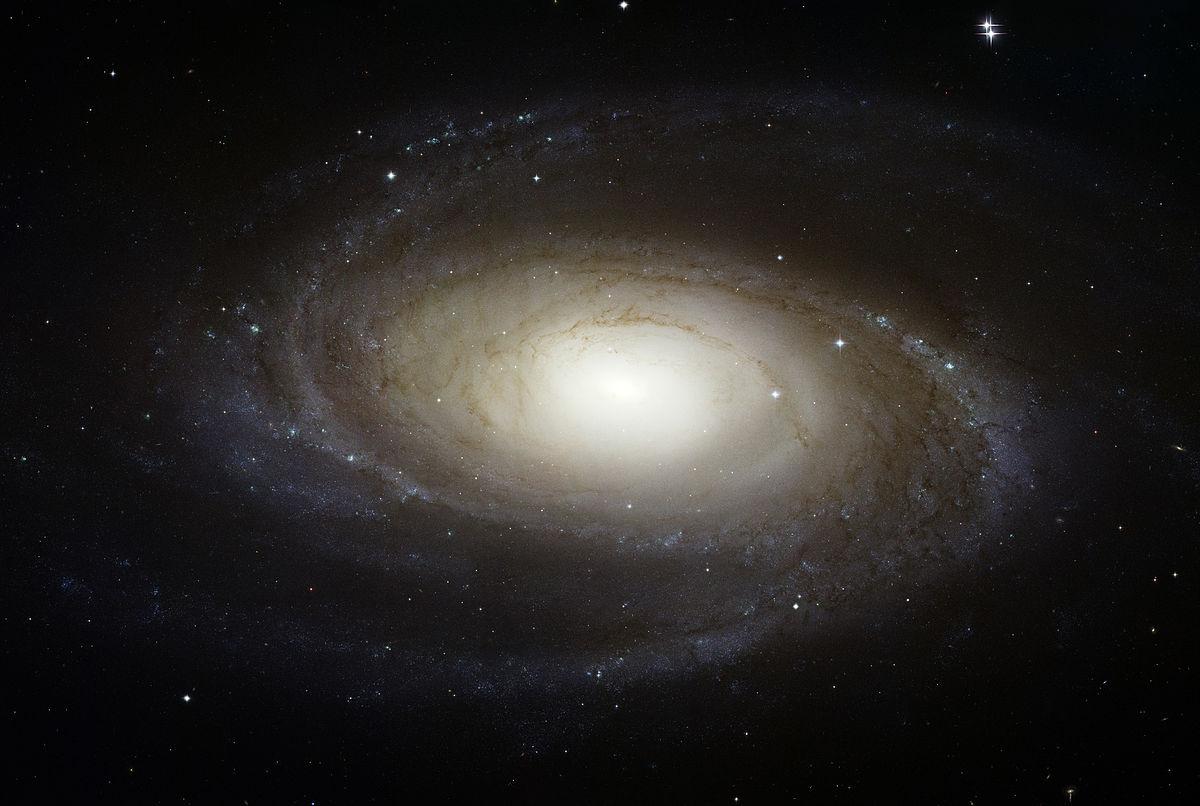 M81- HST